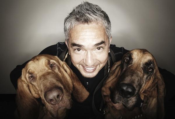 Cesar Milan Dog Whisperer by x_posure