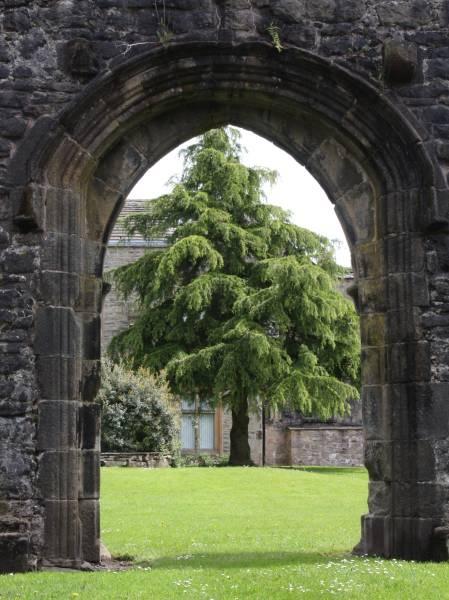 Whalley Abbey, Lancs by SandiR