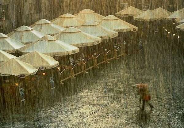 Gold Rain by missmoon