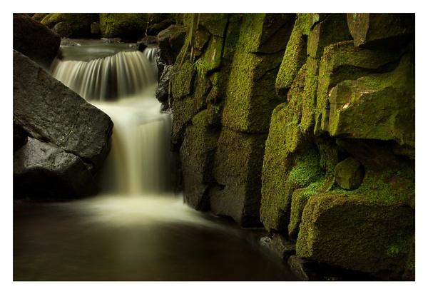 Soft Greens II by ian.daisley