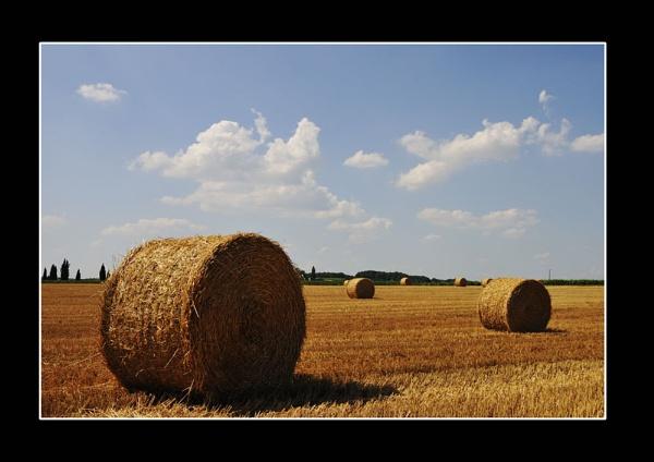 French Hay Bales by suemason