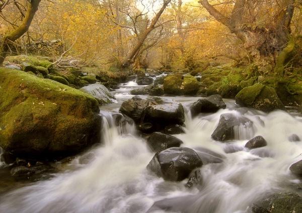 mystic river by wavey