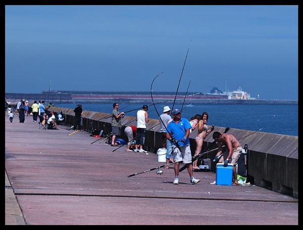Wall of fishing by BERTRAM