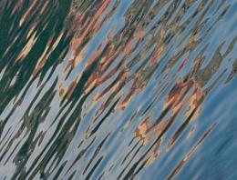 Capri Abstract