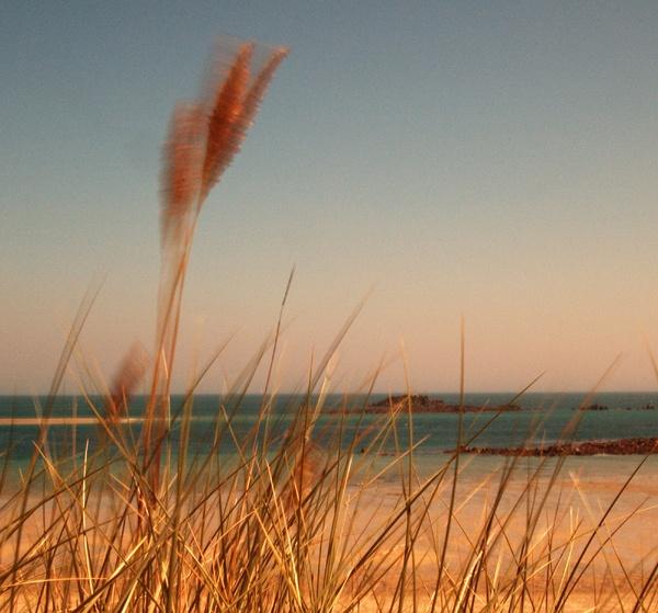 Beach by bruce295