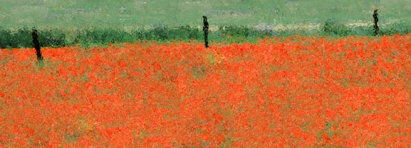 Impressionism:  Poppy Fields by zazzycat