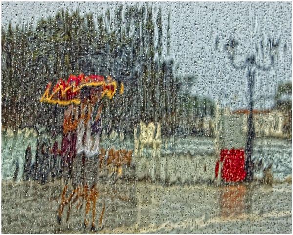 Rainy Days by MickyMc