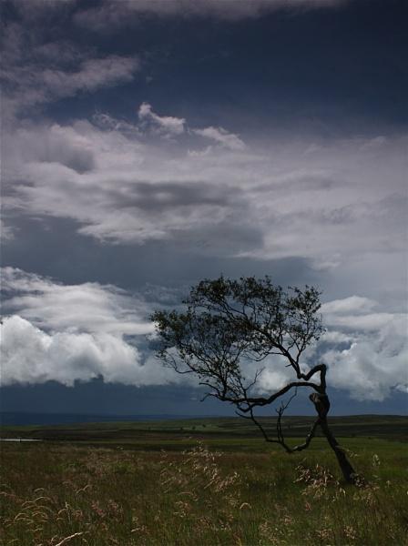 Glory, Glory, Here Comes the Rain! by alansdottir
