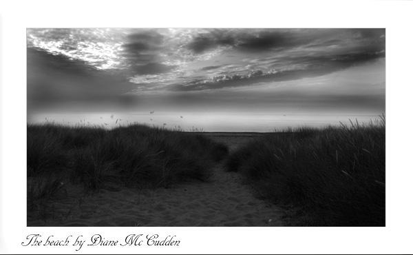 The beach by Diane_McCudden