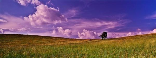 Fantasy land by Gubi