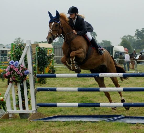 Over the Jump by catmandu