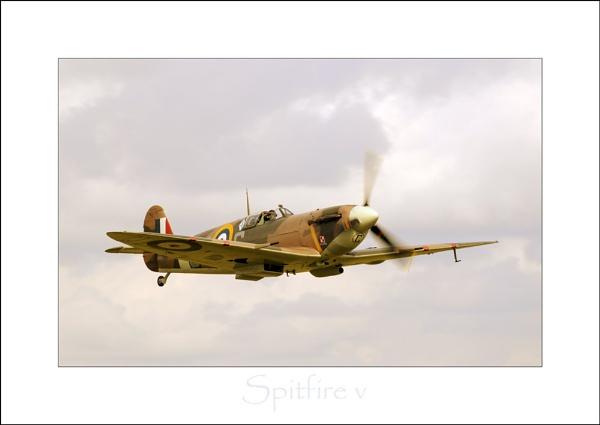Spitfire v by phillips