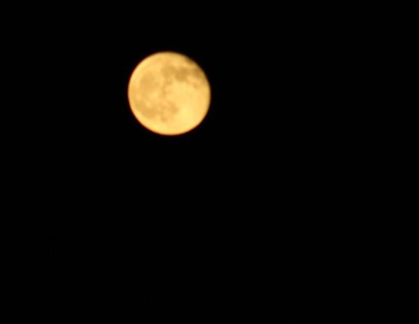 Moon over Texas by chuckspics