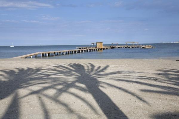 Palm tree shadows by garnham123