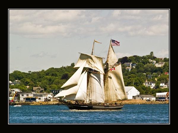 Tall Ships, Halifax, NS 4 by JimV