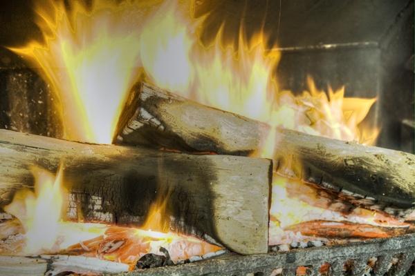 Log Fire by Doglet