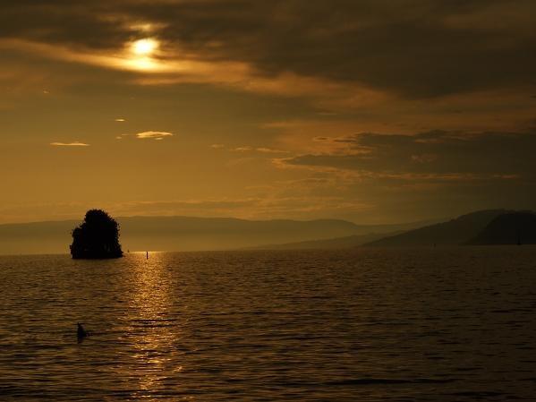 Victoria Island in Silhouette by natz101