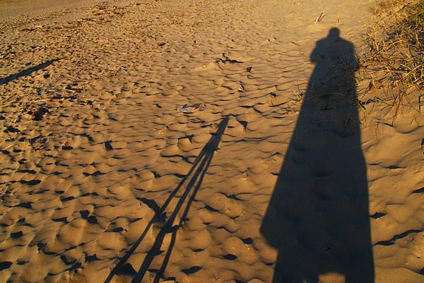Evening Shadow by imagio
