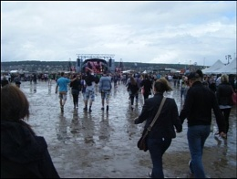 t4 on the beach- muddy mind?