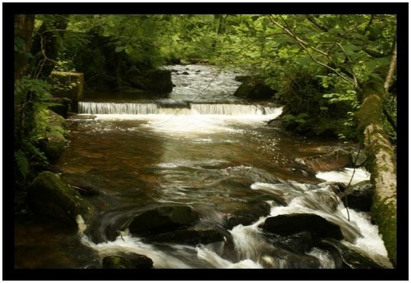 Rapids by RobbieWales