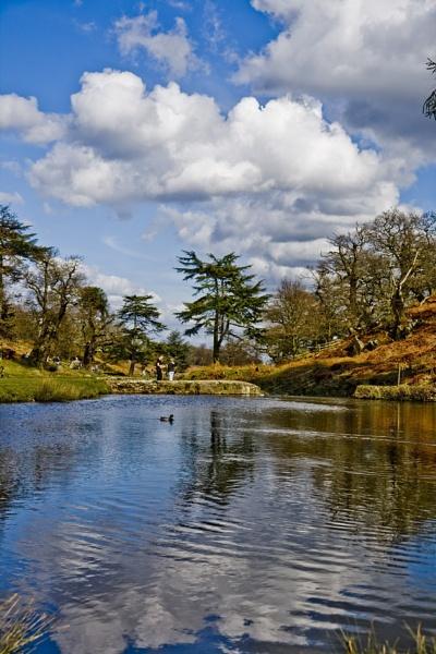 Bradgate Pond by BOBtheDAZZLER