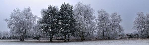 Remember Winter? by marathonman