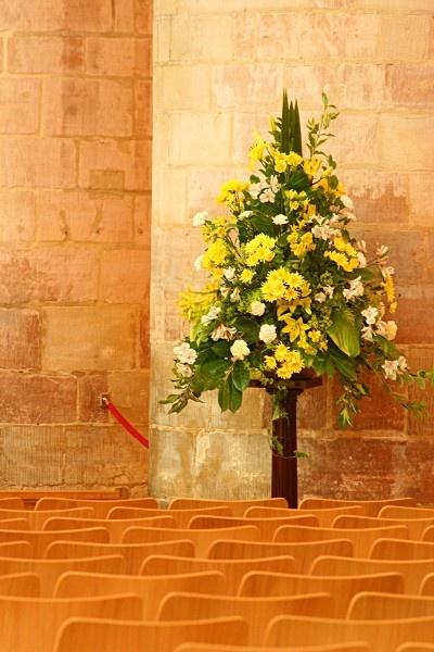 Floral Display by stevenclark