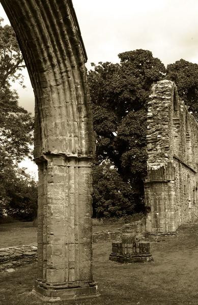 Inchmahome Priory by bigbadgoggs