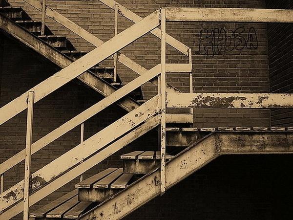 STEPS by Danial