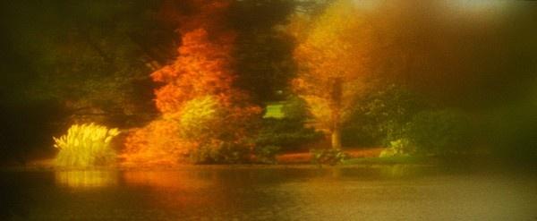 Autumn at Sheffield Park by zazzycat
