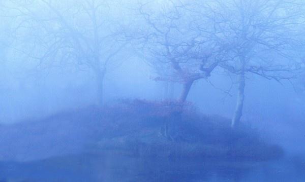 Misty Winter\'s Morning by zazzycat