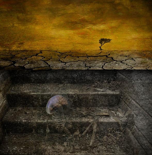 Silence by Eviscera
