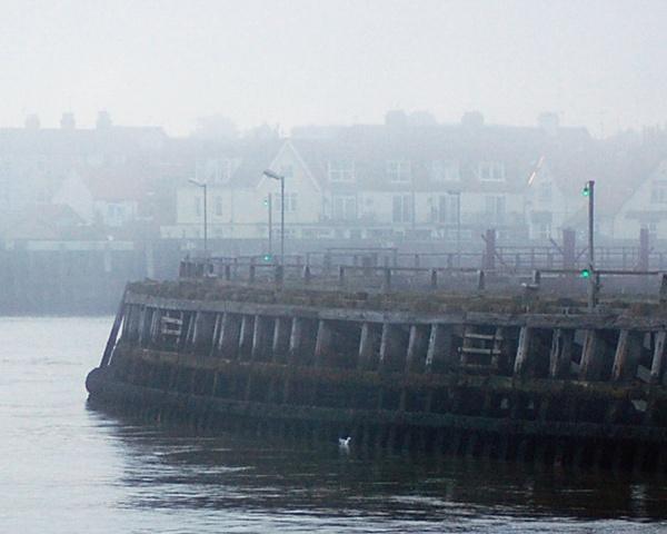 Misty by mollye