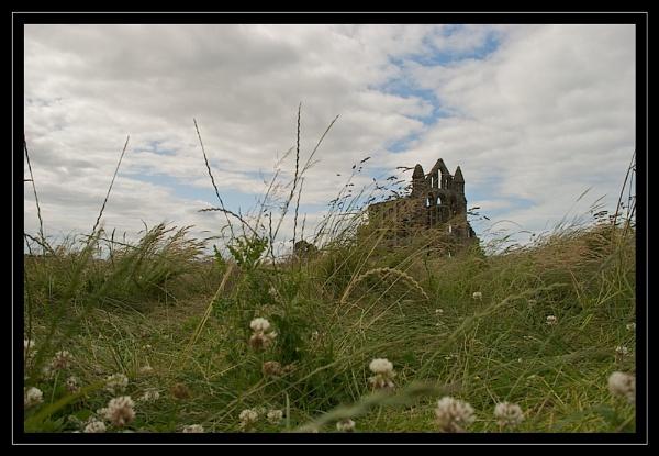 Whitby Abbey by GaryR