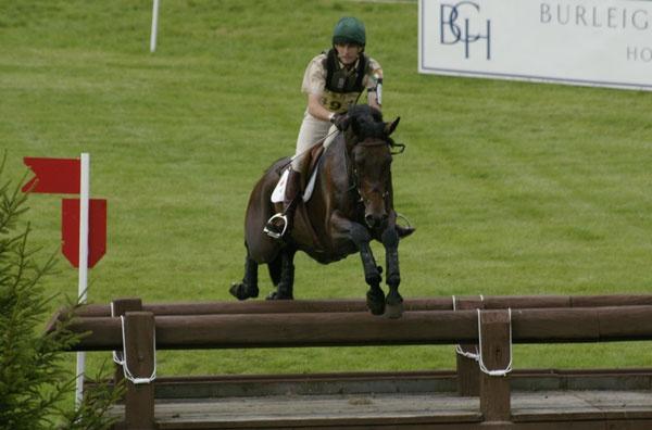 flying horse by ellaw