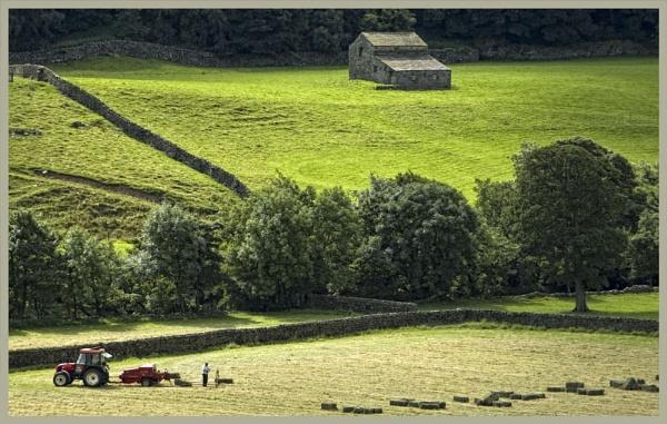 Swaledale Harvesting by MickyMc