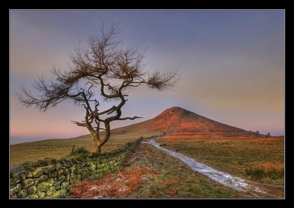 Classic Roseberry by iansnowdon