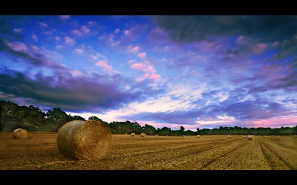 Dappled Skies by arhb