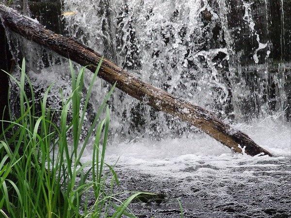 Splashes by REDWOLF