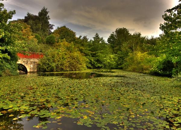 botanical garden edinburgh by davidlaurie
