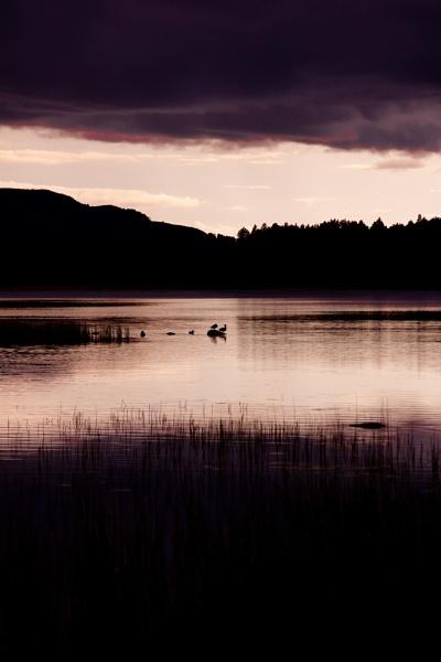 Loch Garten by JGH