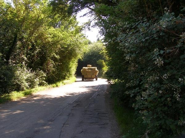Bringing the hay in. by lindah303
