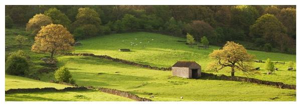 Field Barn below Frogatt Edge by ian.daisley