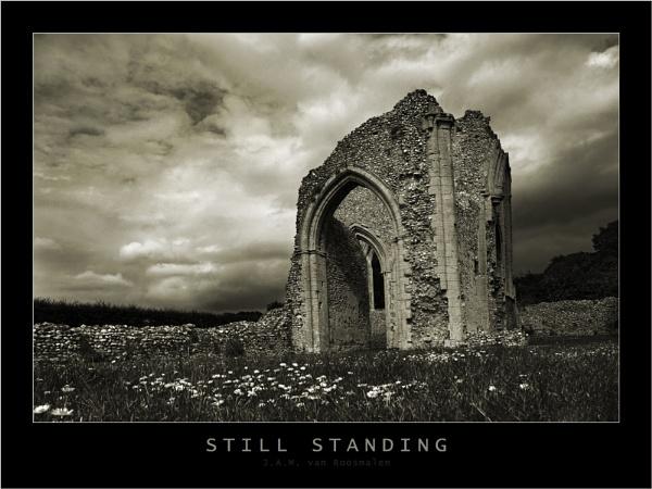 Still Standing by webjam