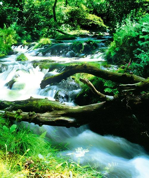 Welsh Waterfall by videocass