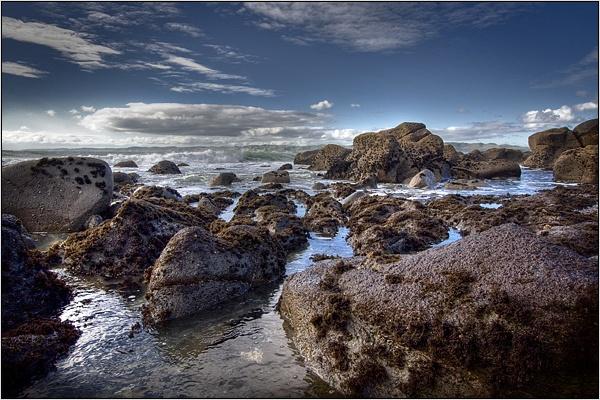 Whale Bay by kalseru