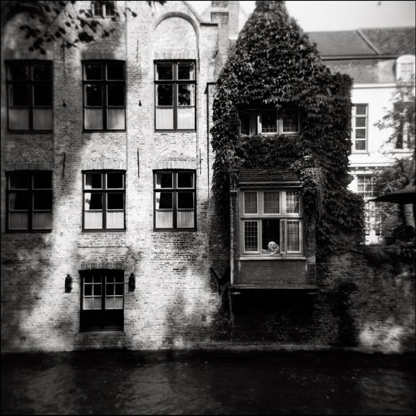 Brugge 1 by peg