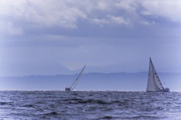 Sailing by Daisymaye