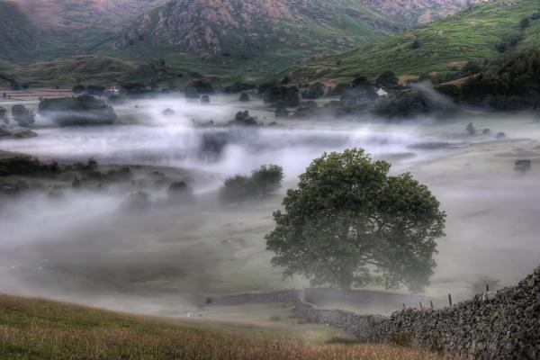Morning Mist in Langdale by tywanda46