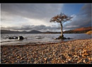 Milarrochy Bay by Nigel_95